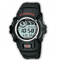 Часы Casio G-Shock G-2900F-1 (20040)