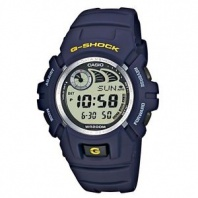 Часы Casio G-Shock G-2900F-2 (20041)